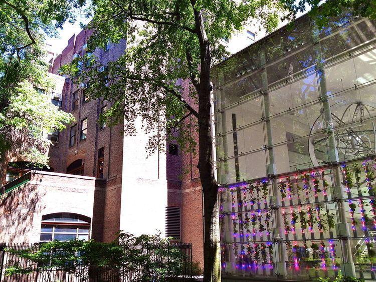 AMNH Exhibitions Lab