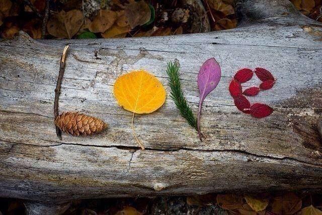 Amor de otoño Amor de otoo Delirio de amor Un nuevo diccionario de la vida