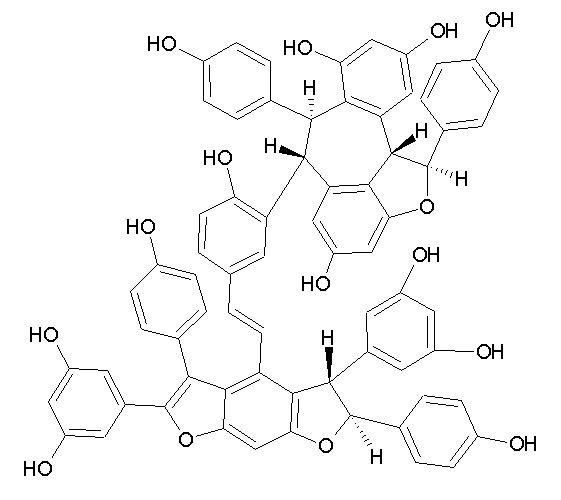 Amurensin E