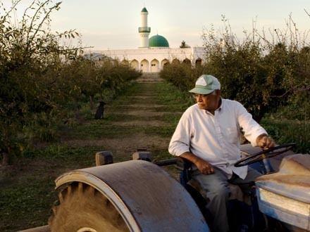 An American Mosque (film) DER Documentary An American Mosque