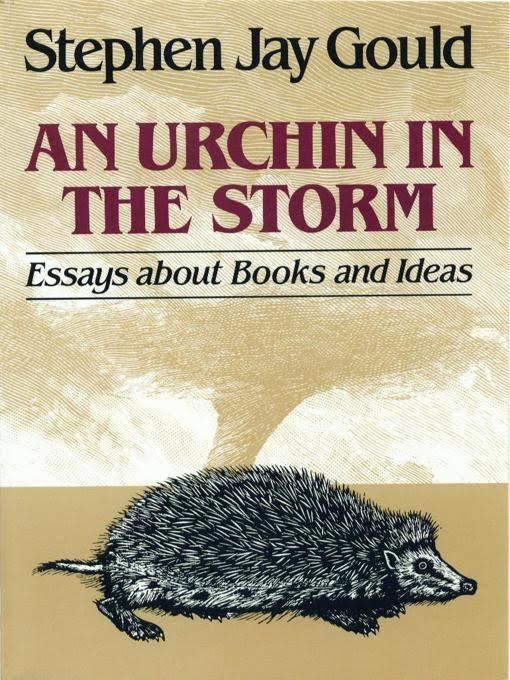 An Urchin in the Storm t2gstaticcomimagesqtbnANd9GcS3k3153UpAyrRjCN