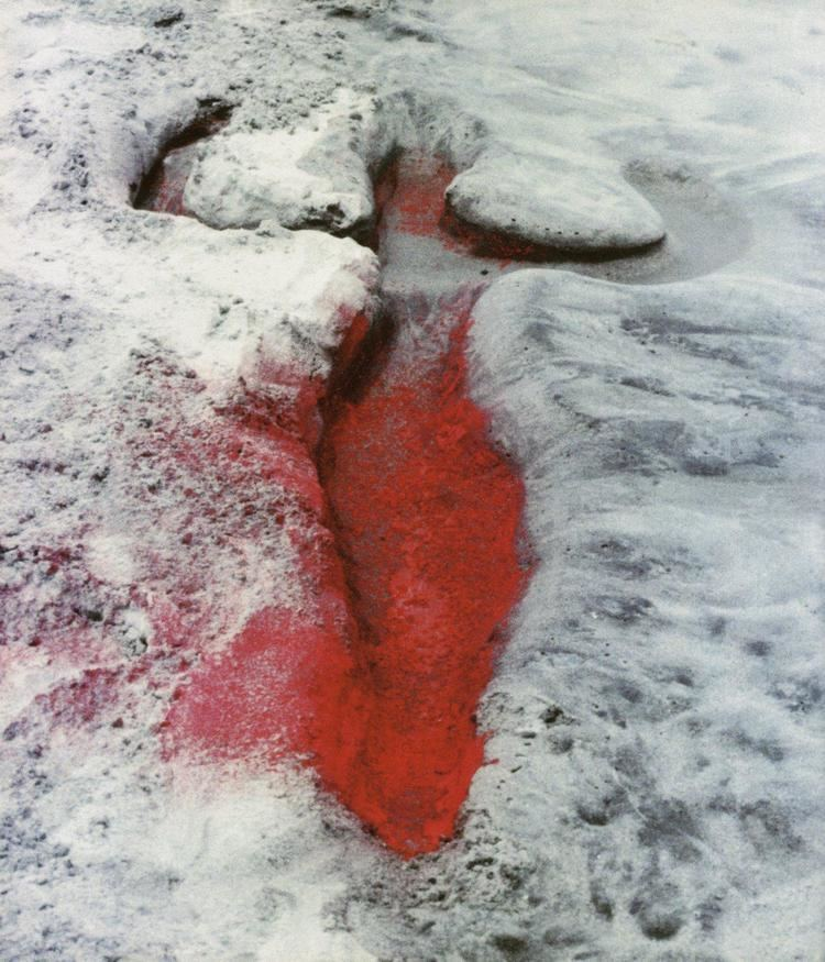 Ana Mendieta Visionary works of Ana Mendieta transpersonalspirit