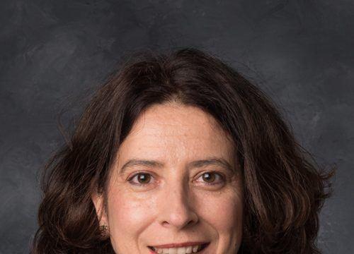 Ana Merino Liberal Arts Sciences