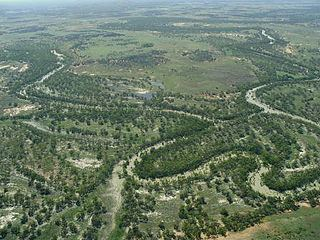 Anabranch Great Darling Anabranch Wikipedia