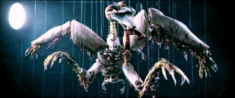 Anamorph (film) Anamorph I ritratti del serial killer Wikipedia