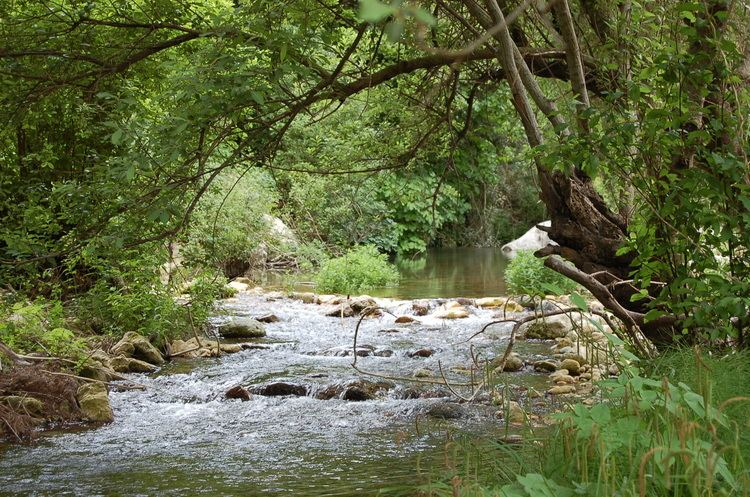 Anapo Syracuse The river valley dell39Anapo walk through nature and