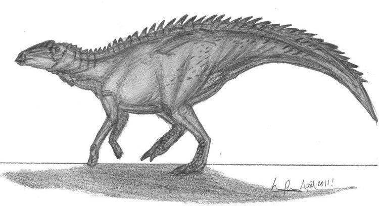 Anasazisaurus fc08deviantartnetfs70i2011116d5anasazisau