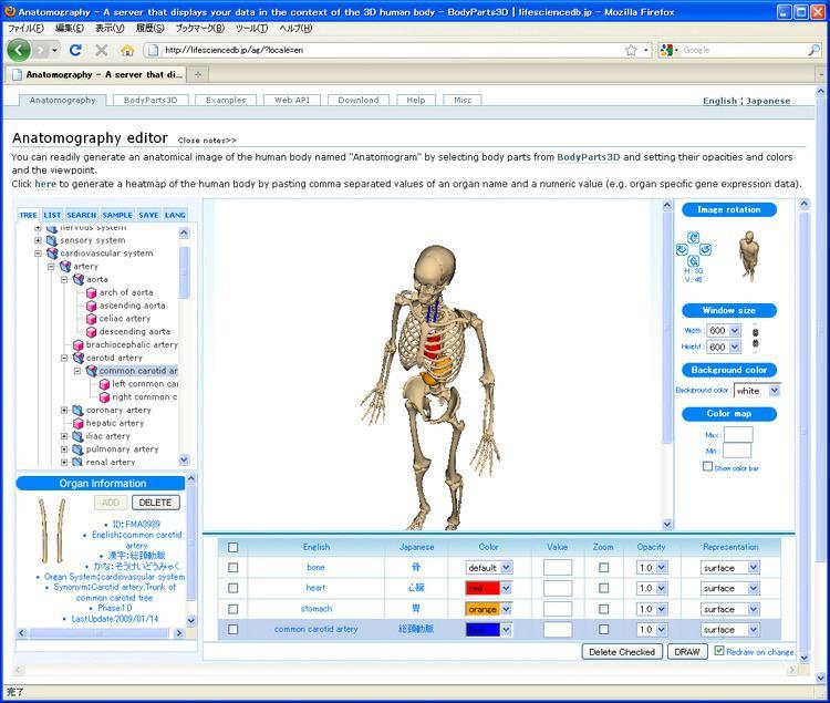 Anatomography