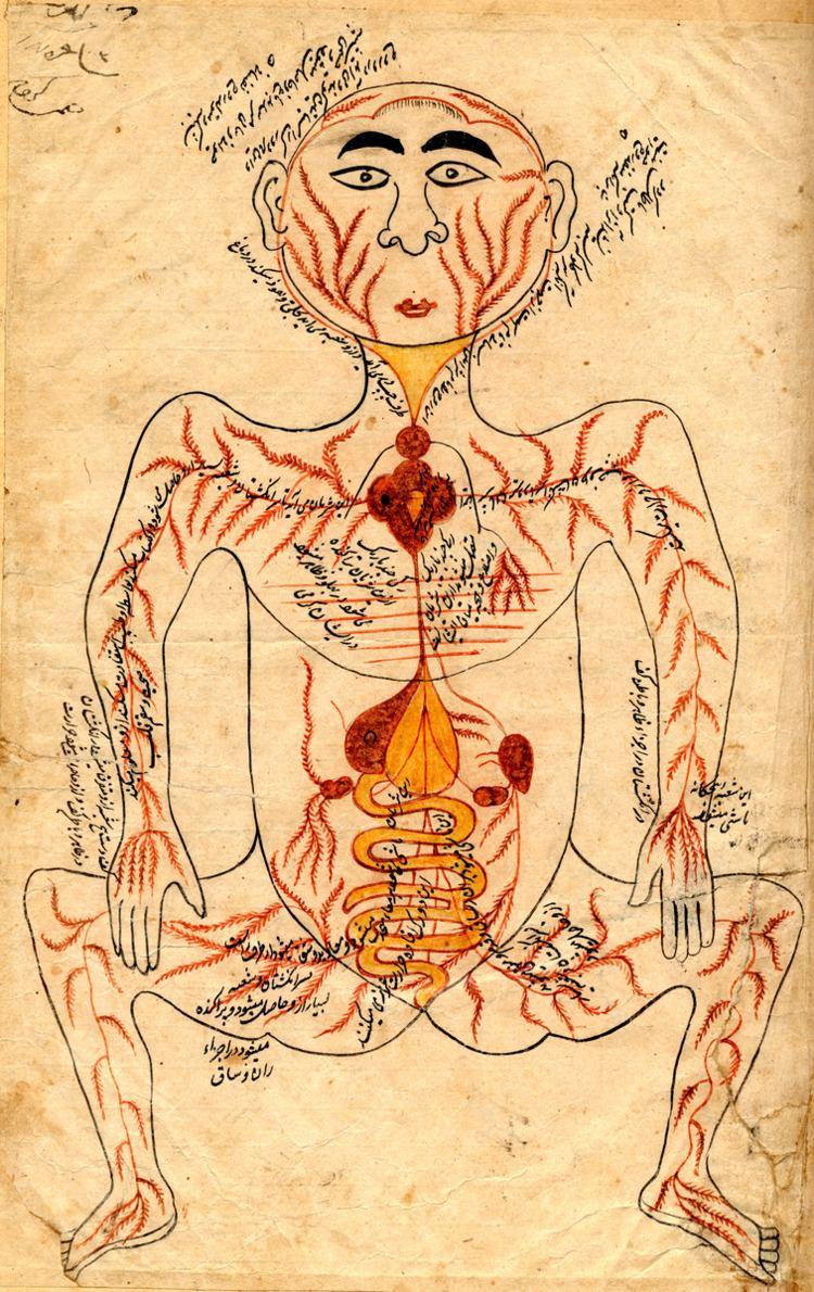 Anatomy Charts of the Arabs