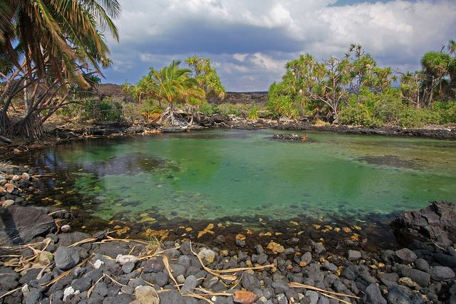 Anchialine pool Anchialine Pools Hawaii Flickr