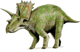 Anchiceratops ANCHICERATOPS DinoChecker dinosaur archive