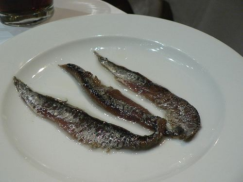 Anchovies as food wiemcogotujeplsitesdefaultfilesanchoisjpg