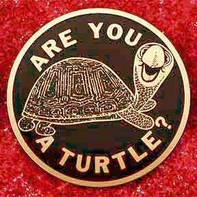Ancient and Honorable Order of Turtles Are You A Turtle Related Keywords amp Suggestions Are You A Turtle