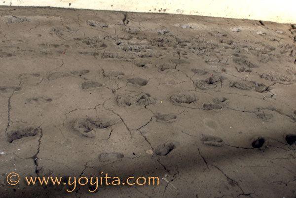 Ancient footprints of Acahualinca Huellas de Acahualinca Managua Nicaragua Ancient footprints of