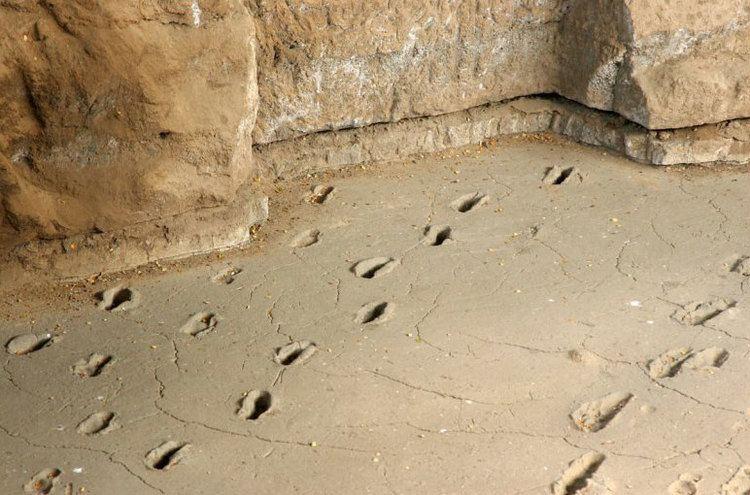 Ancient footprints of Acahualinca Huellas de Acahualinca the museum of ancient footprints
