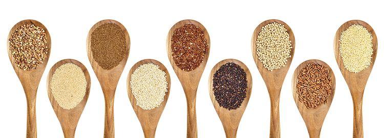 Ancient grains Review Ancient Grains Modern Farmer