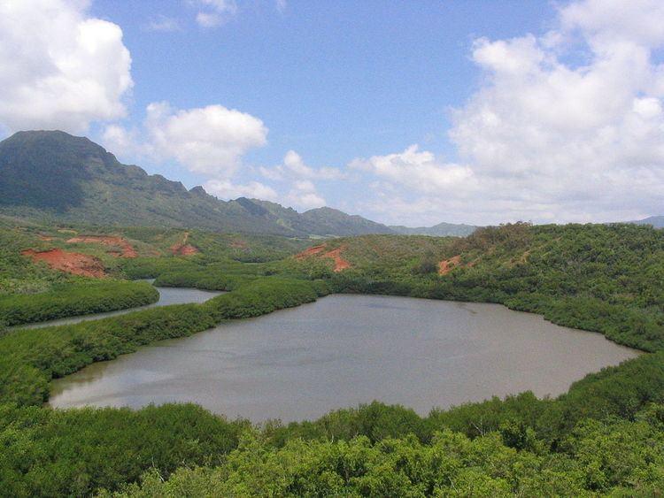 Ancient Hawaiian aquaculture