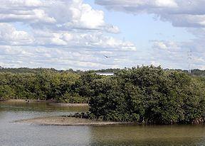 Anclote River httpsuploadwikimediaorgwikipediacommonsthu