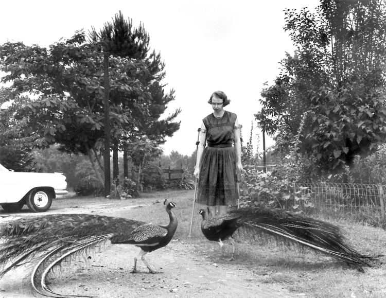 Andalusia (Milledgeville, Georgia) Flannery O39Connor39s Andalusia Farm receives 30000 gift AJC