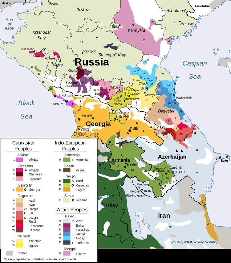 Andi language