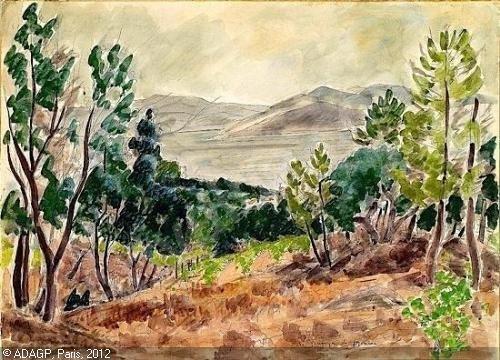 Andre Dunoyer de Segonzac Dunoyer de Segonzac un amoureux de paysages