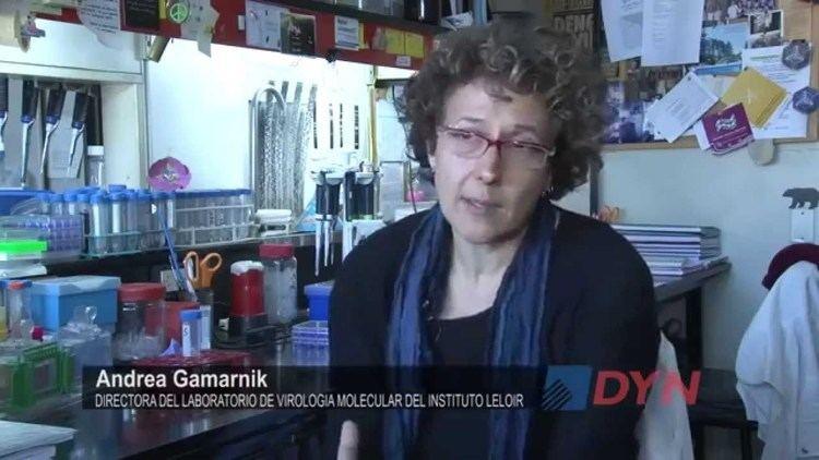 Andrea Gamarnik Dra Andrea GamarnikLa mutacin constante del virus del dengue