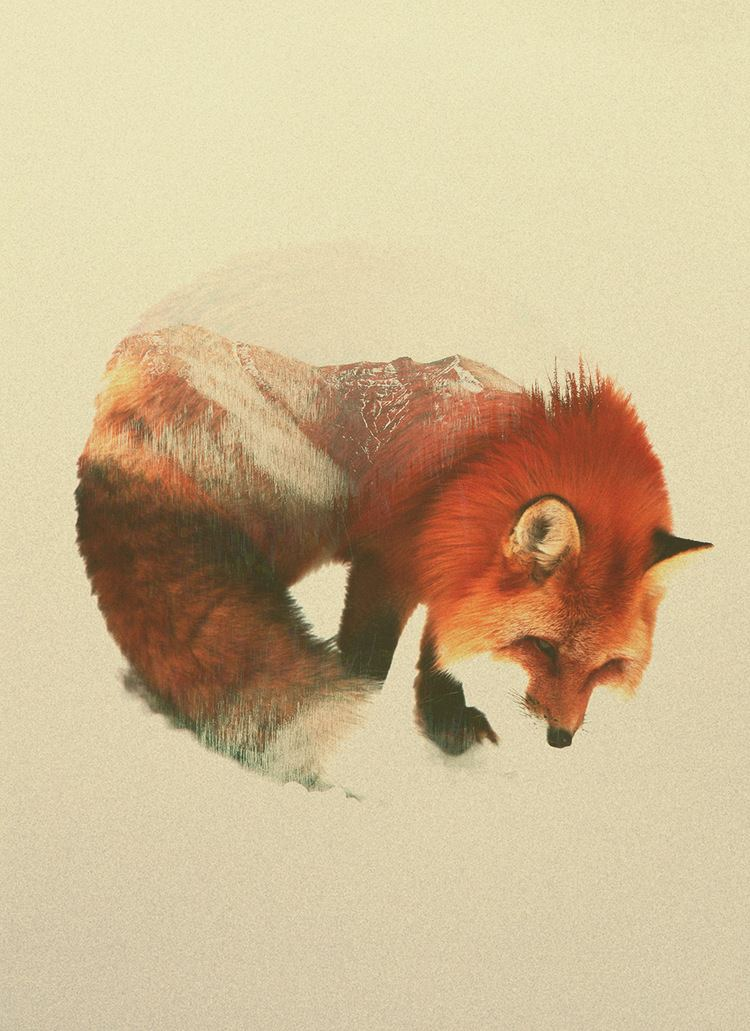 Andreas Lie Double Exposure Animal Portraits by Andreas Lie
