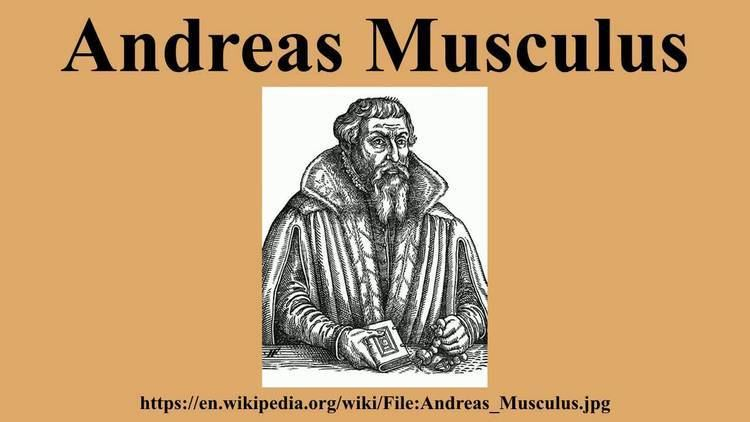 Andreas Musculus Andreas Musculus YouTube