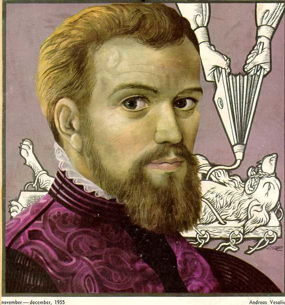 Andreas Vesalius Andreas Vesalius by Antoni Minkiewicz on Prezi