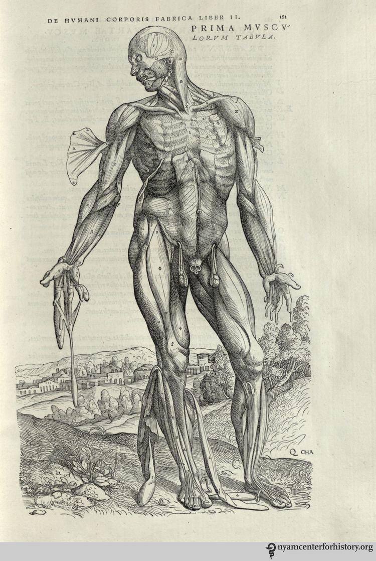 Andreas Vesalius Andreas Vesalius Books Health and History