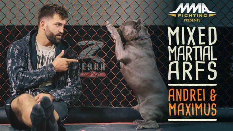 Andrei Arlovski Mixed Martial Arfs Andrei Arlovski and Maximus YouTube
