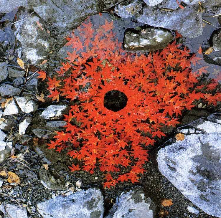 Andy Goldsworthy A Andy Goldsworthy Environmental Art Lessons TES
