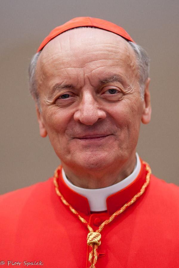 Angelo Comastri treviso SEm il Cardinale Angelo Comastri