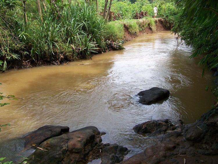 Angke River uploadwikimediaorgwikipediaidaabKaliangkeJPG