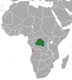 Angolan kusimanse