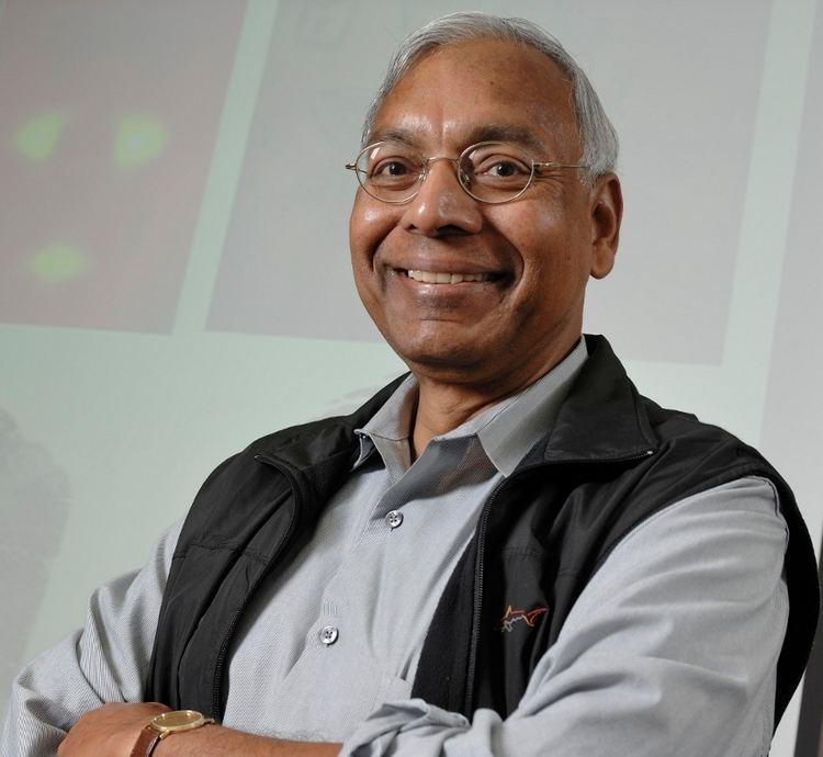 Anil K. Jain (computer scientist, born 1948) wwwwvc2014facomufubrsiteswvc2014facomufub