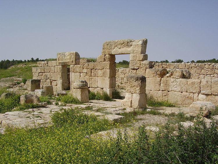 Anim synagogue