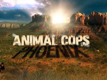 Animal Cops: Phoenix 1000 images about Animal Cops on Pinterest