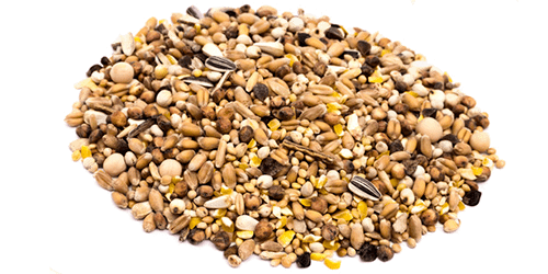 Animal feed Bird and Animal Feed Alliance Zone Inc
