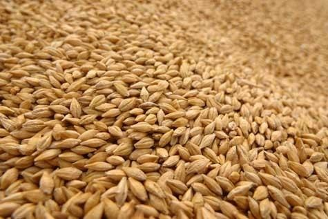 Animal feed Starting an Animal Feed Business Open a Business Resources for