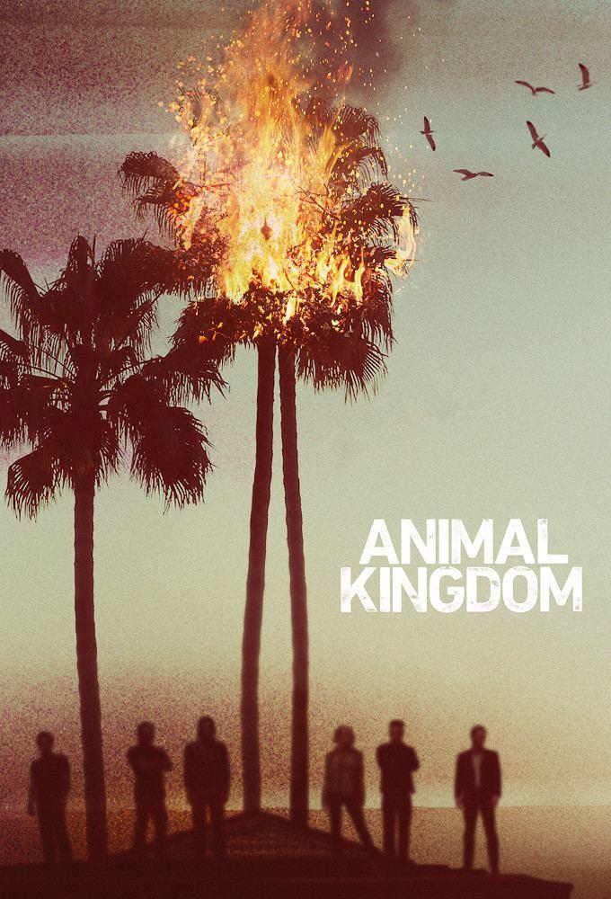 Animal Kingdom (TV series) TV Show Animal Kingdom Season 1 Classic ATRL