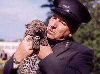 Animal Magic (TV series) Animal Magic Child Of The 198039s