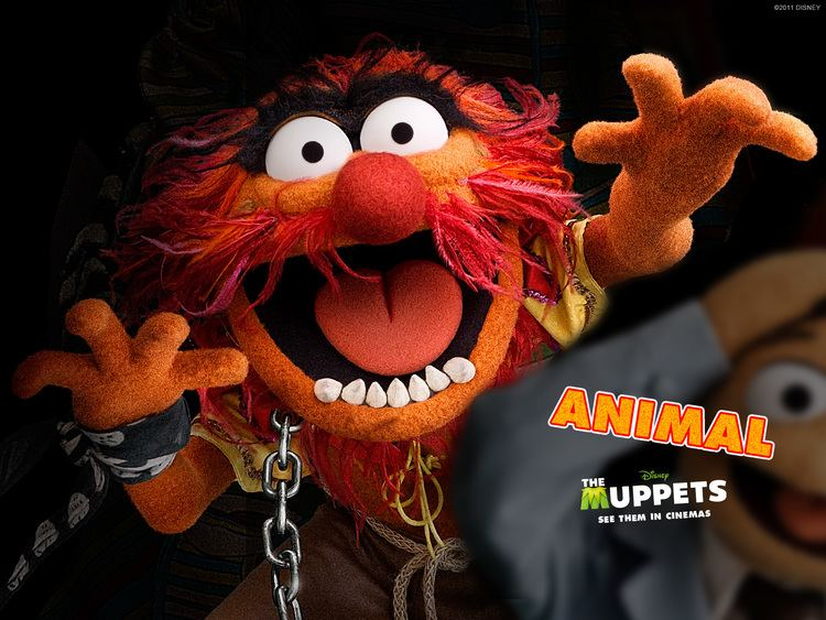 Animal (Muppet) 1000 ideas about Animal Muppet on Pinterest The muppets The