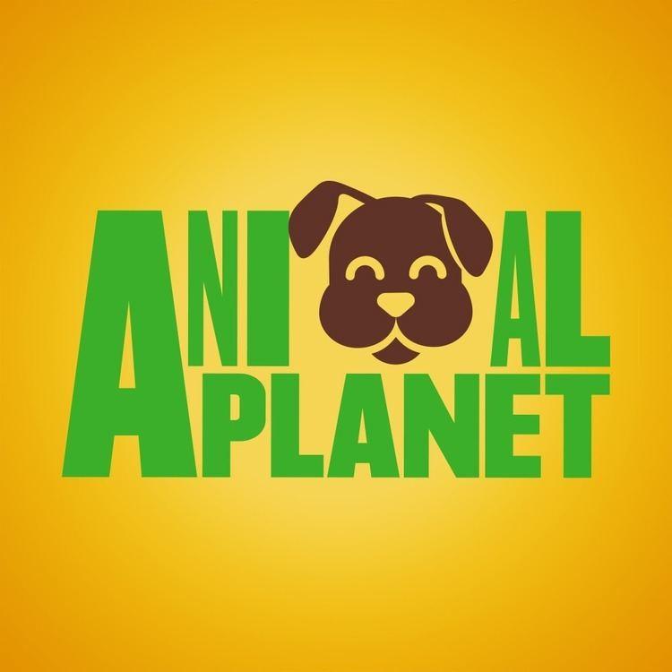 Animal Planet httpslh6googleusercontentcomFEsYkupUbAAAA