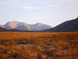 Animas Mountains httpsuploadwikimediaorgwikipediacommonsthu