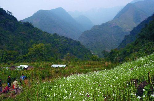 Anjaw district Opium valley