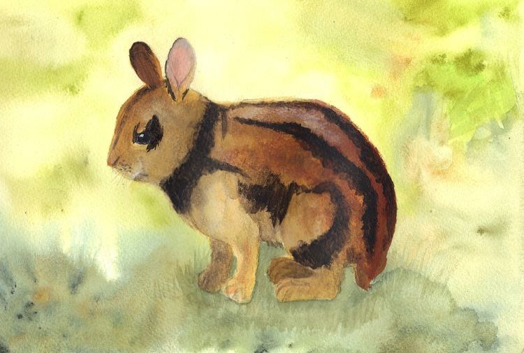 Annamite striped rabbit ANNAMITE STRIPED RABBIT rarelypainted