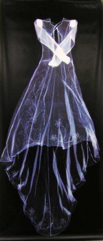 Anne Ferran Sutton Gallery Artist Profile Anne Ferran