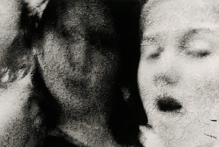 Anne Ferran Scenes on the Death of Nature IV 1986 by Anne Ferran The