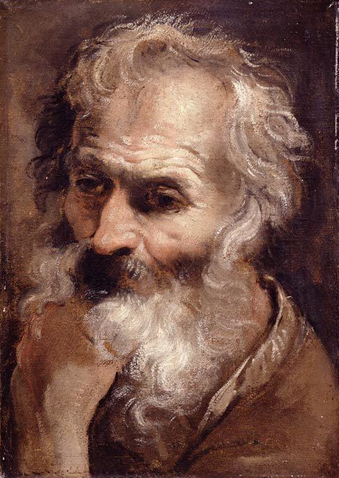 Annibale Carracci Head of an Old Man by Annibale Carracci ArtinthePicturecom